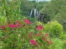 Opeakaa Falls (Kauai)